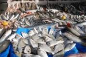 kültür balık ızgara salonu